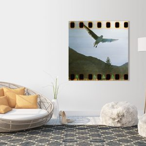fly_canvas geel