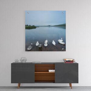 sitting ducks a